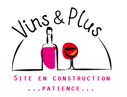 LOGO-vins&plus-cmjn-En construction
