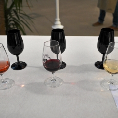 Vins et Plus_156